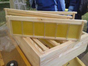 рамки для секційного меду Бджолярський Круг 2016