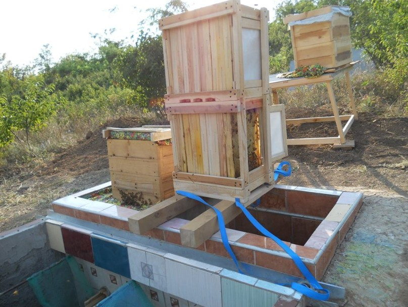 земляной комбинированный улей для пчел