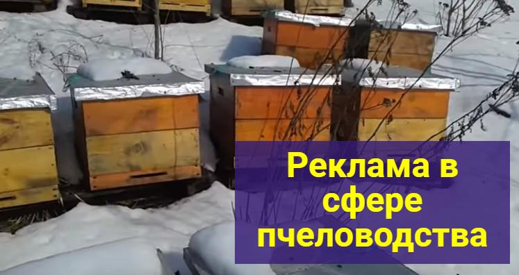 доска объявлений для пасечников и пчеловодов