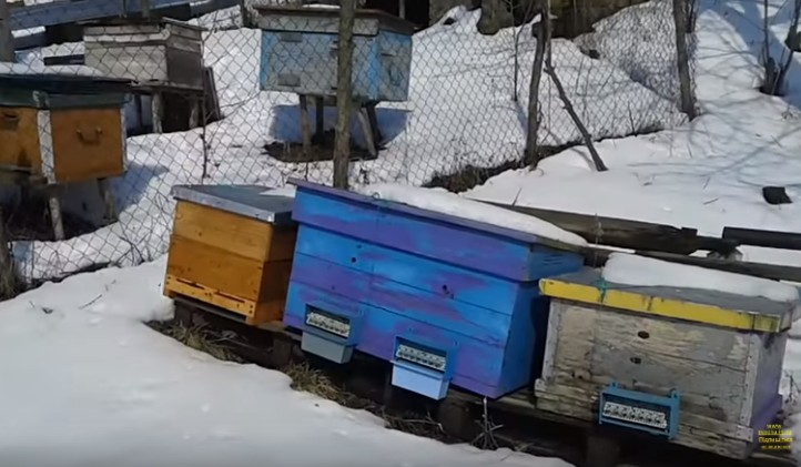 Дом пчелы Улей лежак