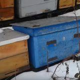 Подготовка-пчел-к-зимовке