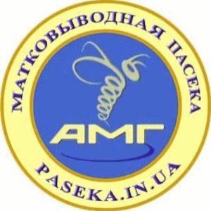 Матковыводная Пасека АМГ