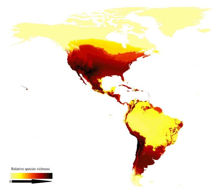 карта пчел в мире, карта розповсюдження бджіл в світі, бджоли на карті, карта бджіл, мапа бджіл в світі