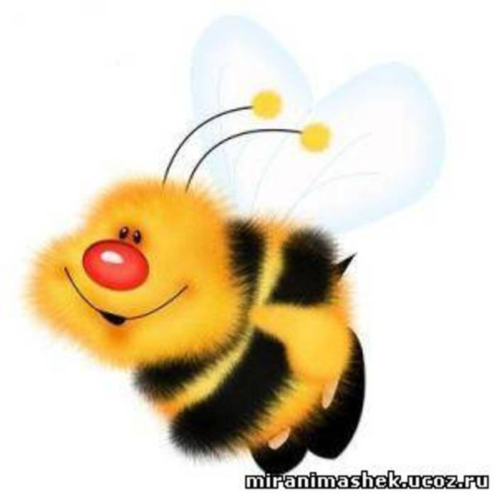 Веселі картинки та фото про бджіл
