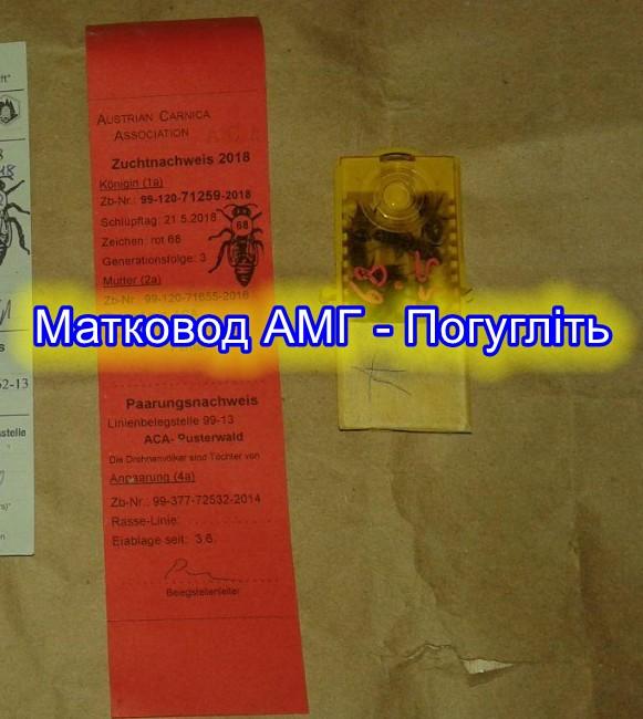 паспорт матки, Продаж бджоломаток, паспорт пернера