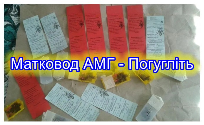 паспорт бджолиних маток, Бджоломатки Карніка характеристика, Карніка штучного запліднення, Карника пешец