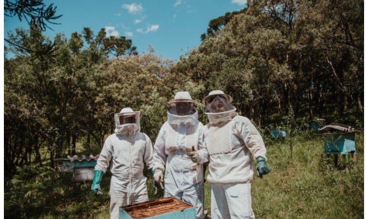 магазини бджільництва, магазин бджільництва, магазин пчеловодства, магазины пчеловодства, магазин для пчеловодов, пчеловодческий магазин, пчеловодство магазин, бджільництво магазин, пасіка магазин, магазин для пасічників, пасічницька крамниця, пасічницький магазин,